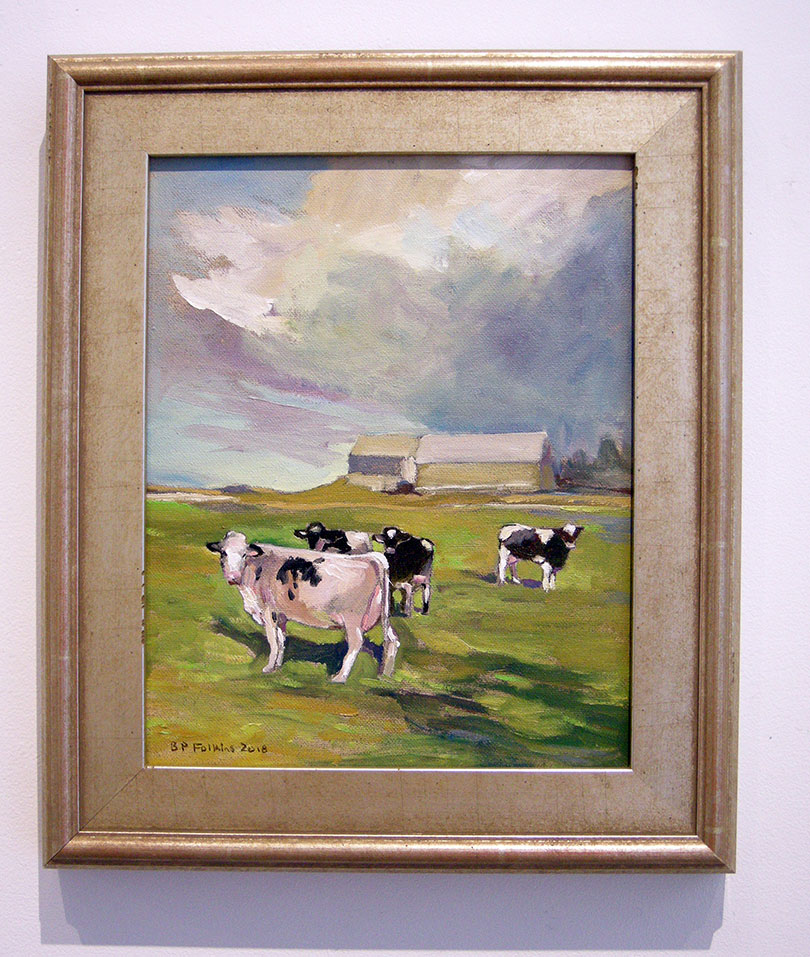 Cows at Middle Sackville